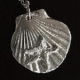 Clamshell and Starfish Pendant, 2.5cm